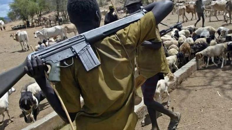 Fulani Dominance: Yoruba elders in diaspora take case to UN