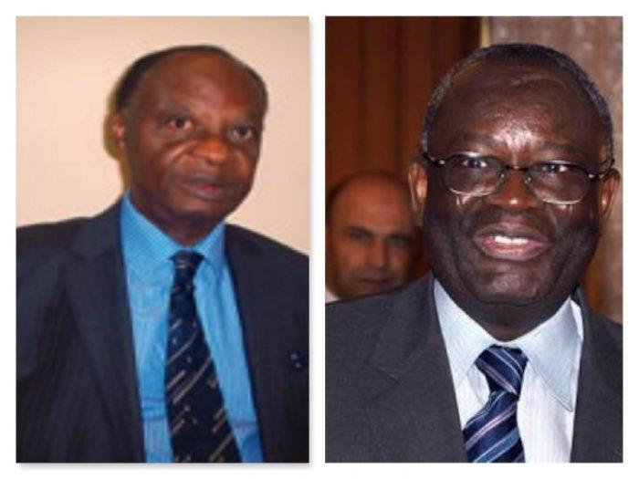 How Ibrahim Gambari Betrayed Me - Amb. Fafowora