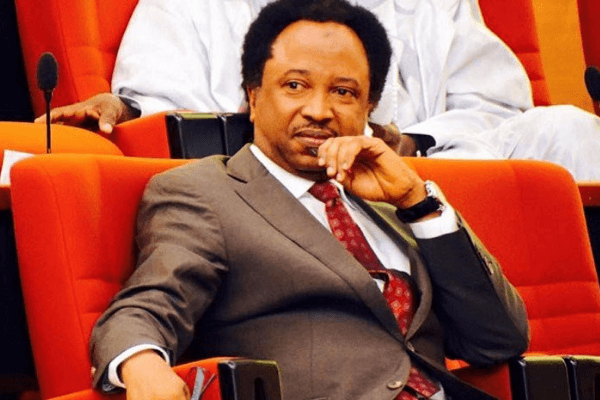 Shehu Sani Reacts As Boko Haram Attacks Borno Gov's Convoy