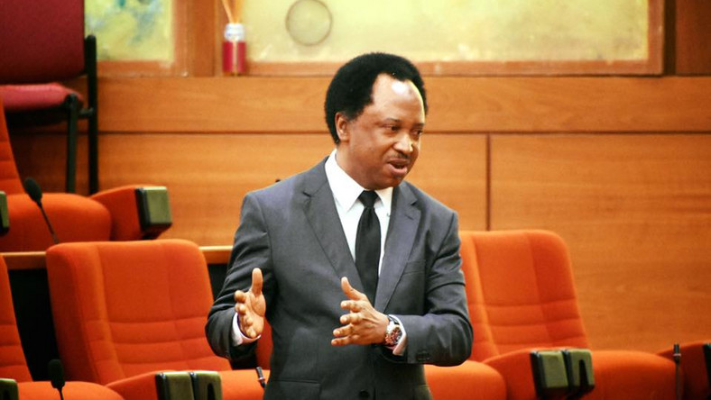 End SARS: Trade Unions, Opposition Parties Failed Nigerians – Sani