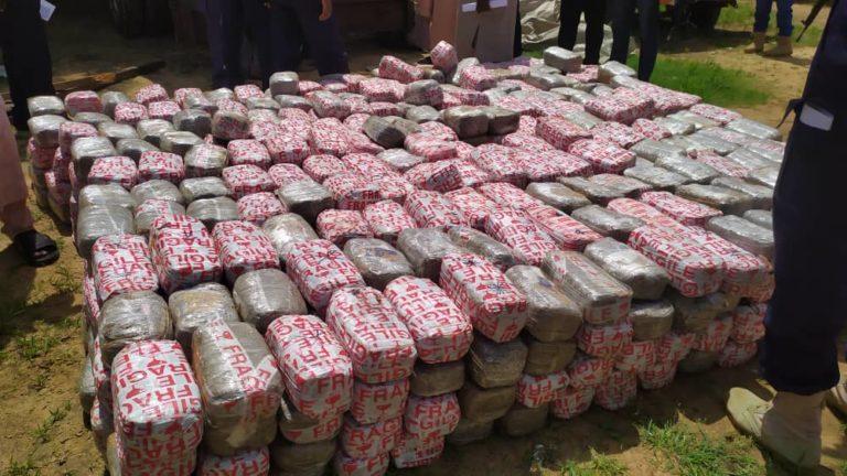 NDLEA intercepts, seizes cannabis worth N10 million in Yobe