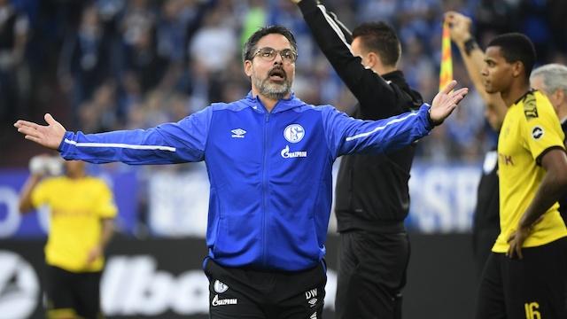 Schalke Sack Manager David Wagner