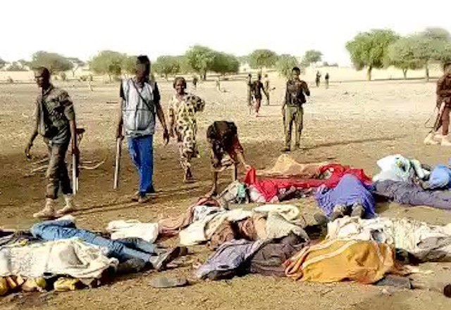 Boko Haram slaughters 14 farmers near Maiduguri