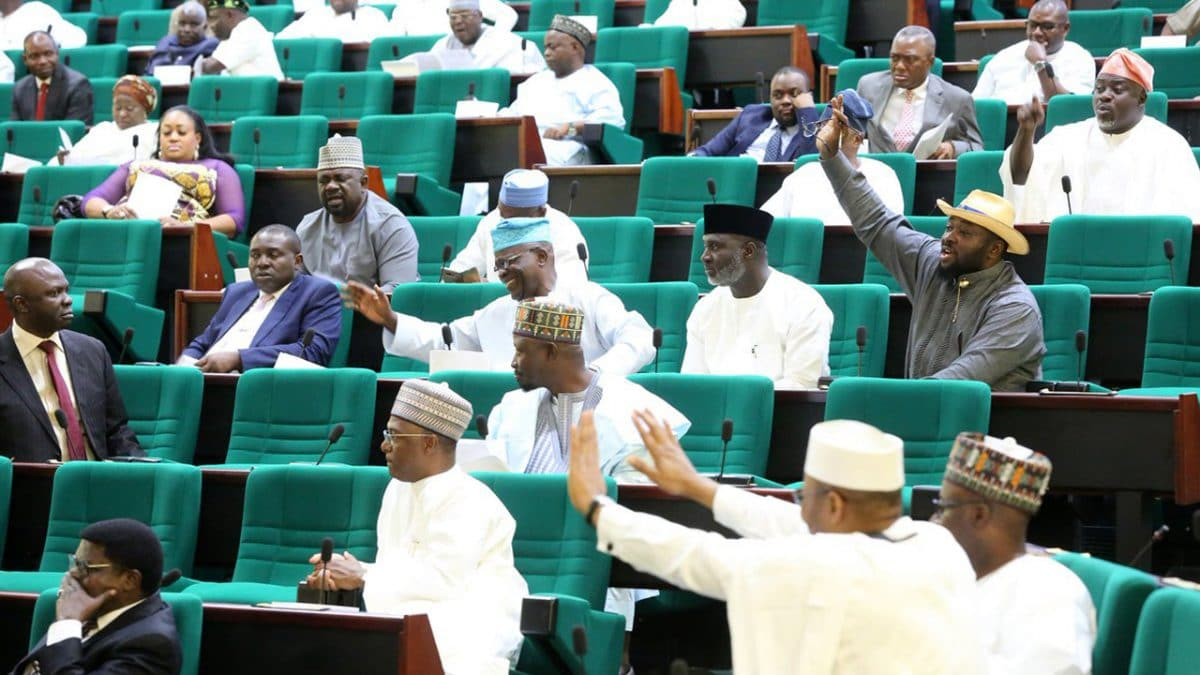 Reps Ask INEC To Review Constituencies, Senatorial Districts