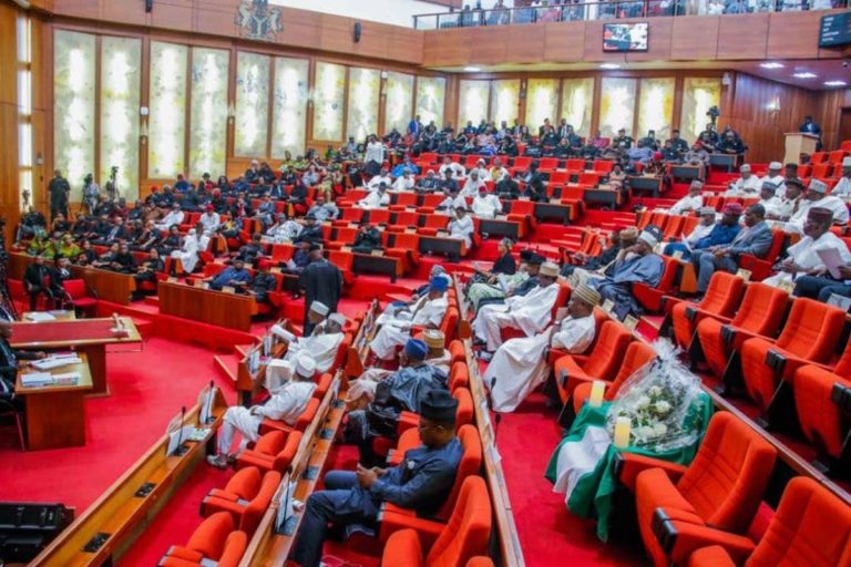'Senate Not For Thugs' – Sen Ohuabunwa Slams Adeyemi