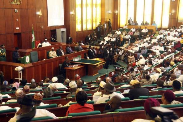 Ebola Virus Resurgence Nigerian Reps Expresses Concern