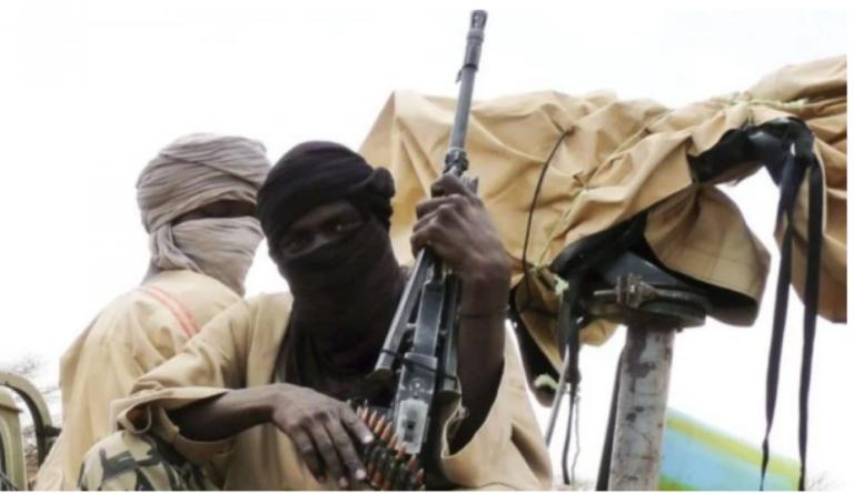Bandits Kill Nine, Rustle 500 Cattle In Sokoto Village