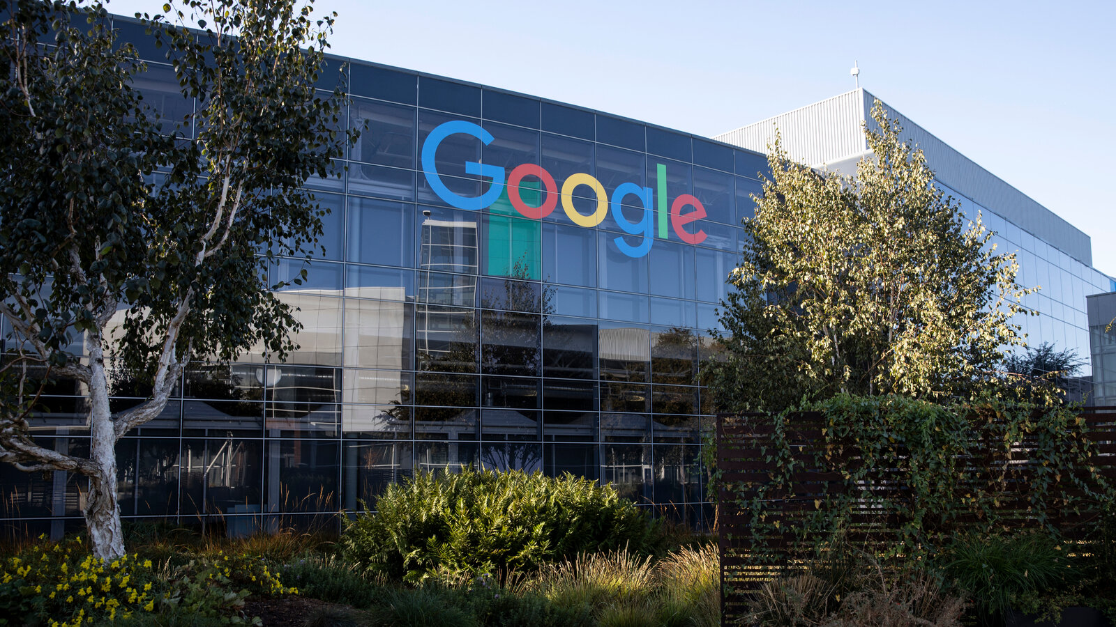 Google Introduces Special Feature To Aid Vaccine-Finding