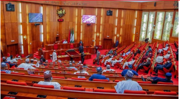 How Govt-Owned Agencies Failed To Remit ₦2tn - Senate Panel