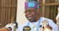 How Tinubu Lost All His Money In U.S. Because Of Drug(Video)