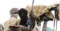 Panic As Gunmen Attack Zaria Again, Abduct Residents